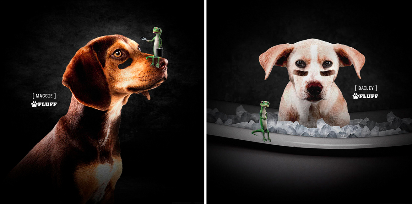 Puppy Bowl XIII: Geico Campaign